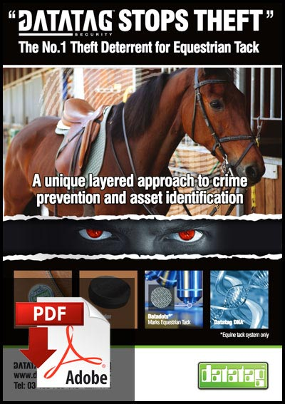 Datatag Equine Flyer