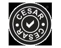 CESAR Scheme