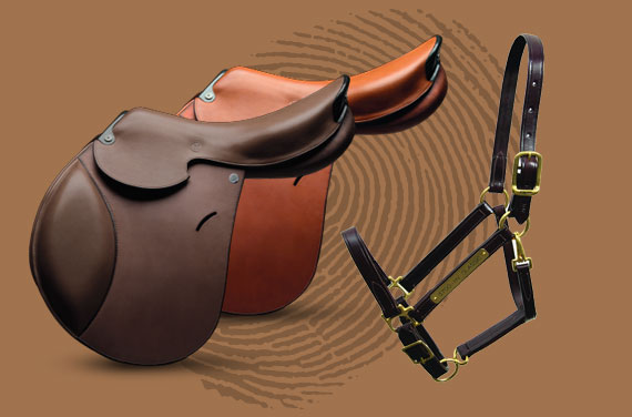 Datatag Equine Tack System