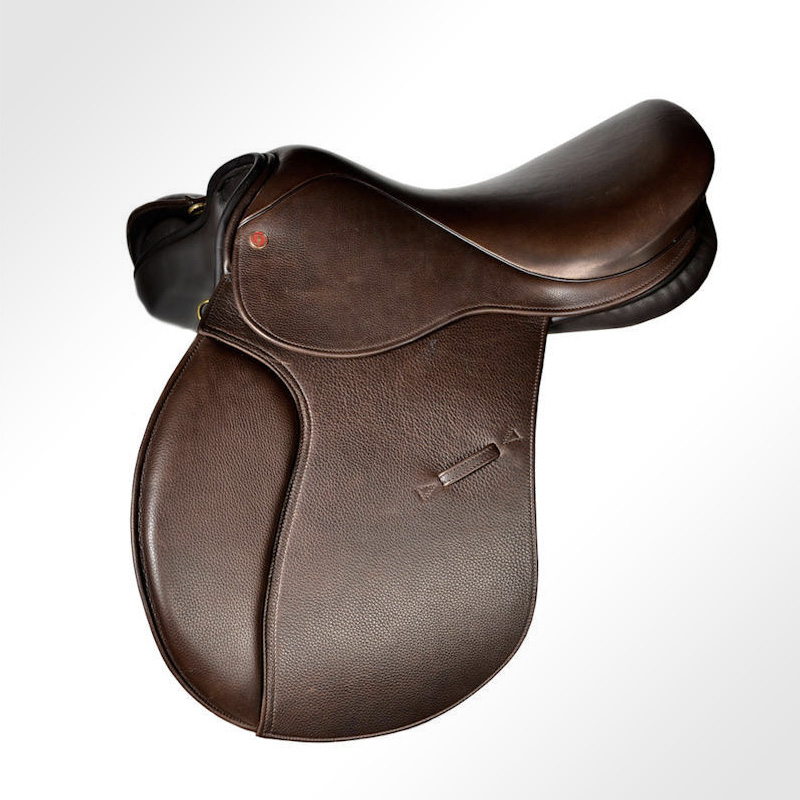 Equine Saddle System